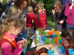 Vers fruit uit schooltuin